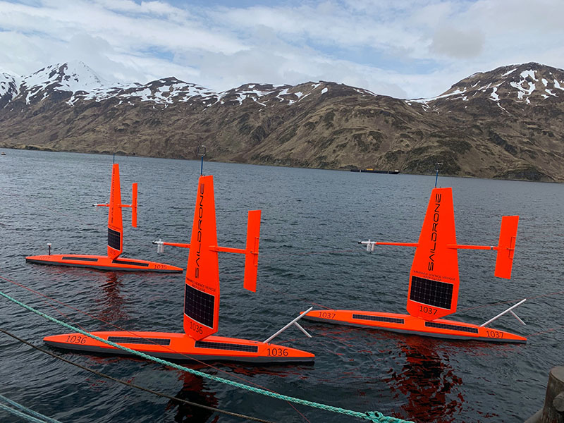 Three of six saildrones ready for deployment in Dutch Harbor.